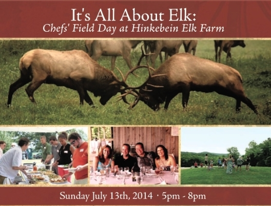 It's All About Elk